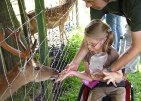 Ein kleines Mädchen im Rollstuhl füttert ein Reh durch einen Zaun. Das Mädchen wird dabei von einem Erzieher gestützt.