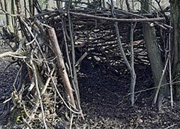 Eine Hütte aus Ästen und Zweigen im Wald.