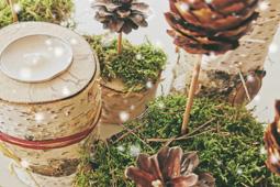 Adventsgestecke mit Moos, Tannenzapfen und Kerzen